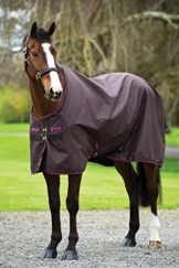 Horseware Amigo Hero 6 Turnout - 50g - Chocolate with Chocolate & Raspberry, Groesse:145 -