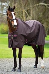 Horseware Amigo Hero 6 Turnout - 50g - Chocolate with Chocolate & Raspberry, Groesse:145 -