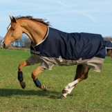 Horseware Amigo Mio Turnout Lite 0g - Navy & Tan with Navy - Weidedecke, Groesse:145 -