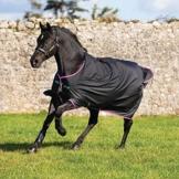 Horseware Amigo Turnout Hero 6 medium black purple (130) -
