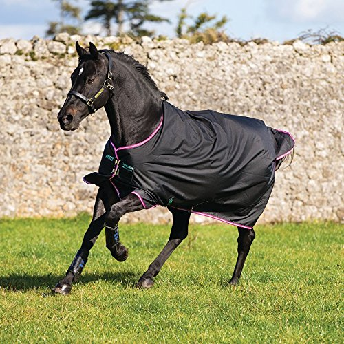 Horseware Amigo Turnout Hero 6 medium black purple (130) -